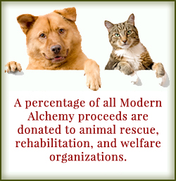 Modern Alchemy Donates to Animal Causes